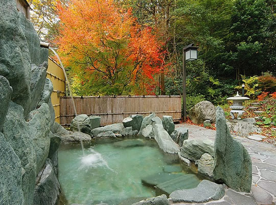 大歩危・祖谷周辺の温泉