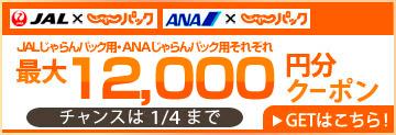 dp_coupon_0727.jpg