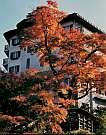 伊香保温泉 橋本ホテル
