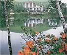 白樺湖 レイクサイドホテル 山幸閣 画像