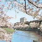 東京ディズニーランド・ディズニーシー付近の格安ホテル宿泊予約 じゃらん新高輪プリンスホテル