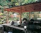 山野草の宿 二人静