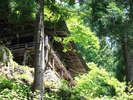 三大修験場【小菅神社】奥社!野沢から往復で2時間ちょっとの小旅行が可能!猛烈におすすめです!