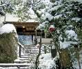 日本庭園を通り過ぎると…