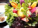 *自家菜園で作る新鮮野菜を素材の味そのままに頂く「壱岐の恵みサラダ」