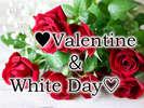 バレンタイン&ホワイトデーは花束で感謝の想いを伝えませんか♪※写真はイメージです。