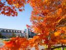 外観/秋。五色沼まで徒歩3分。紅葉を存分に楽しめます。