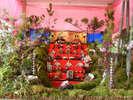 <第19回綾雛山まつり>商店や個人宅に飾られた華やかな雛山をご覧下さい。