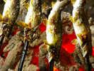 *大好評の当館名物、大鮎の塩焼きや鶏のからあげ、焼きそばなど、大ボリューム!※イメージです