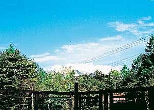 自然と美味しい空気。美しい景色もごちそうに