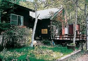 周りを自然の木々に囲まれた宿の入り口