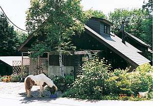 大泉高原乗馬牧場フリースペースの外観