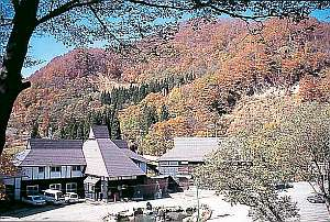 秋山郷温泉保養センター湯元雄川閣の外観