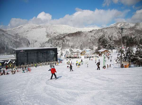 【スキープラン】楽しくスキー旅行♪ささやかなプレゼント付