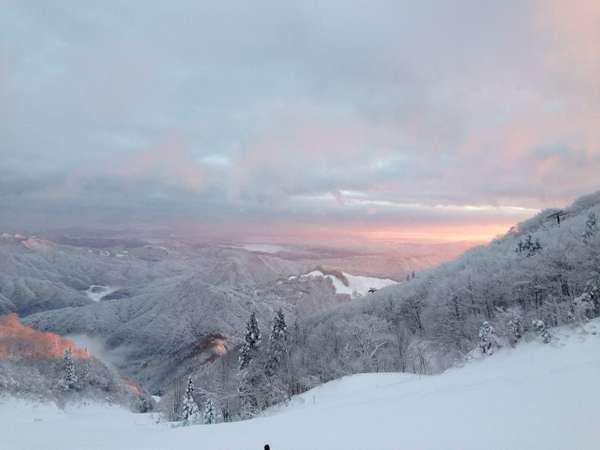 【年末限定】レジャー・ビジネス・スキー旅行に!ミネラルウォーター付☆