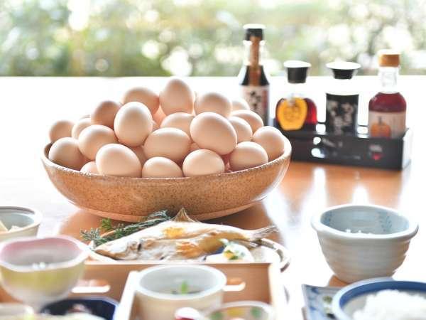 こだわりの朝食に新サービス登場!卵かけご飯プラス8種のお醤油バイキング♪おかわり自由です!