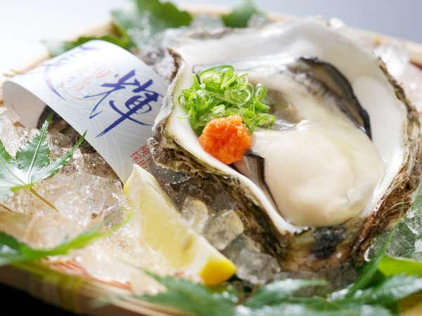 【岩牡蠣】春から初夏の山陰の味覚!ぷりっと肉厚な牡蠣をぜひご賞味ください。