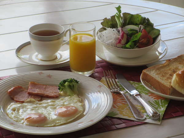 シュノンソー ホテル TWプラン朝食付き