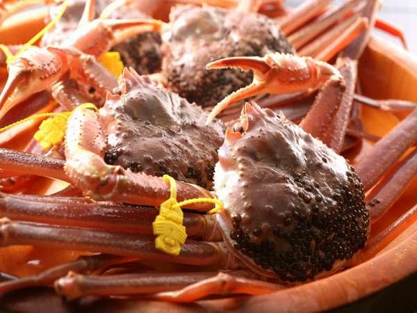 「新鮮な魚介は目利きが命!」が口癖の料理長。ずっしりと身が詰まった厳選の越前蟹。
