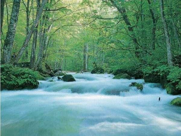 奥入瀬渓流まではホテルから車で約30分マイナスイオンたっぷりな滝は深呼吸したくなる空間