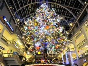 【冬の定番観光】サッポロファクトリージャンボクリスマスツリーと大通公園イルミネーション巡り〜食事なし