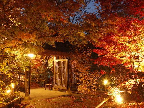 日本三美人の湯 湯宿 草菴