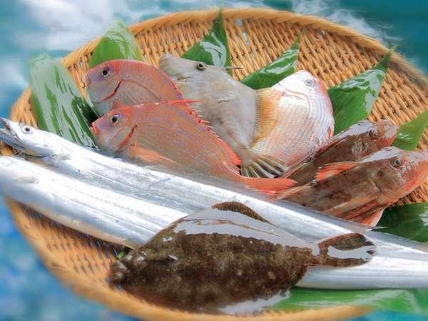 毎朝漁港で仕入れる新鮮な魚介類 写真提供:じゃらんnet