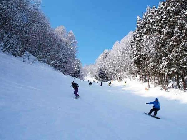 白馬スキーシーズン【お食事無し】ゲレンデまで約10分!〜HAKUBA VALLEY〜