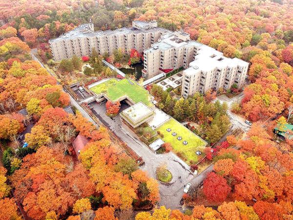 【外観 秋】色鮮やかな紅葉に包まれる北軽井沢の秋