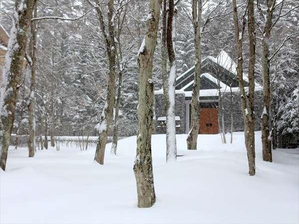 幻想的なイルミネーションが灯る冬の軽井沢へ 旧軽井沢ホテル・ウィンタープラン(朝食付き)