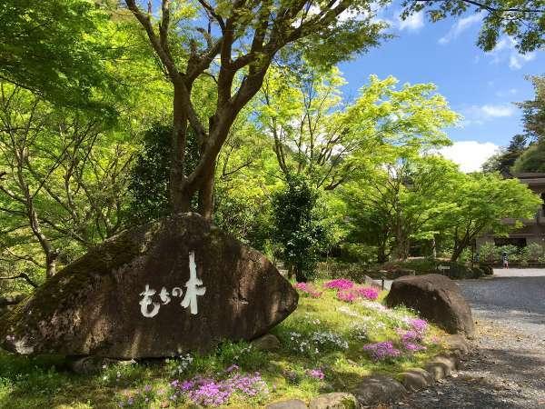 渓谷別庭 もちの木の外観