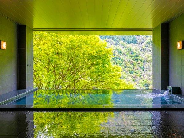 ■展望風呂 SORA NO YU■新緑の季節、瑞々しい空気が満ちています