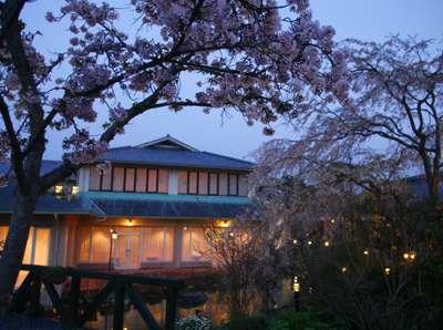 【ガーデン:春】数種類の桜が次々と咲くホクモンガーデン。夜桜の風情はまた格別です。