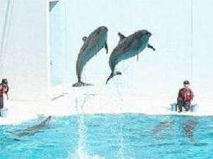 【特典】須磨海浜水族園入園券付き ちょっとだけプラン♪