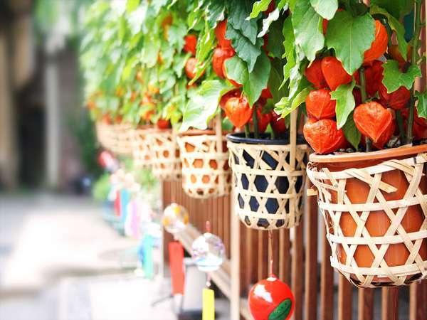 【じゃらん限定×朝食無料】ボーナスプラン♪夏休みのお得な旅を応援♪(お日にち限定)