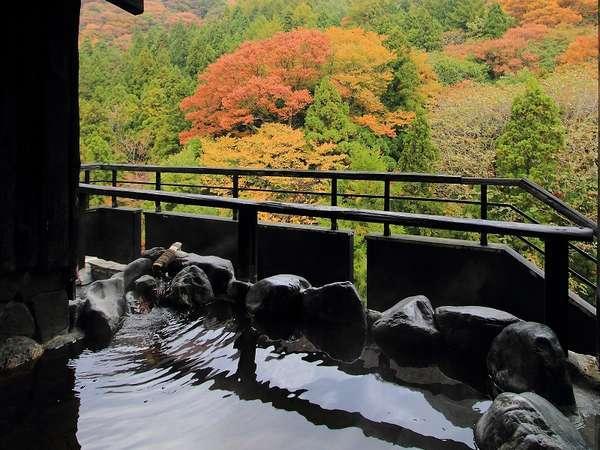 【50歳からの大人の会津旅】ベストシーズン秋の城下町をのんびり観光&秋の訪れを感じながら温泉三昧プラン