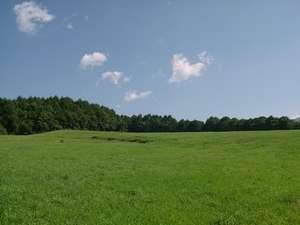 窓の外に広がる雄大な牧草地