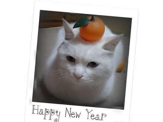 【大好評!】2017年 HAPPY NEW YEARプラン