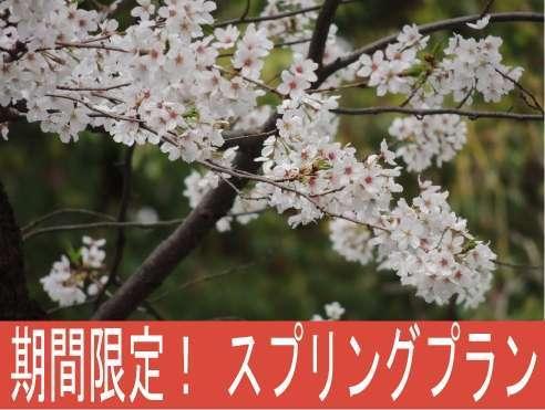 【春季限定!上野駅至近】スプリングプラン♪(喫煙ルーム) ■WI-FI無料■