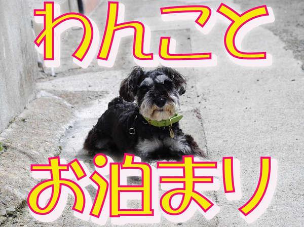 【ペット(犬)とお泊まり】ディナーバイキングプラン