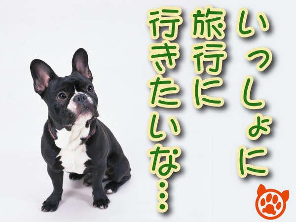 【ペット(犬)とお泊り】 飛騨牛付・【ぎふ旅】 飛騨牛と四季の炭火焼会席【スタンダードプラン】