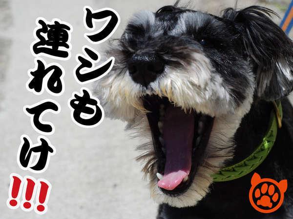 【ペット(犬)とお泊り】1泊朝食付きプラン