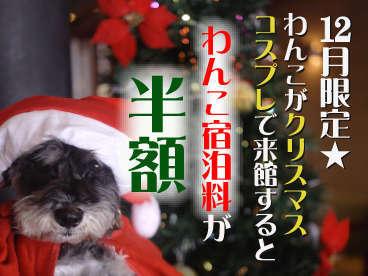 ペット(犬)同宿歓迎★わんこのクリスマスコスプレでわんこ宿泊料半額!冬の下呂を楽しもう♪【花火も!】