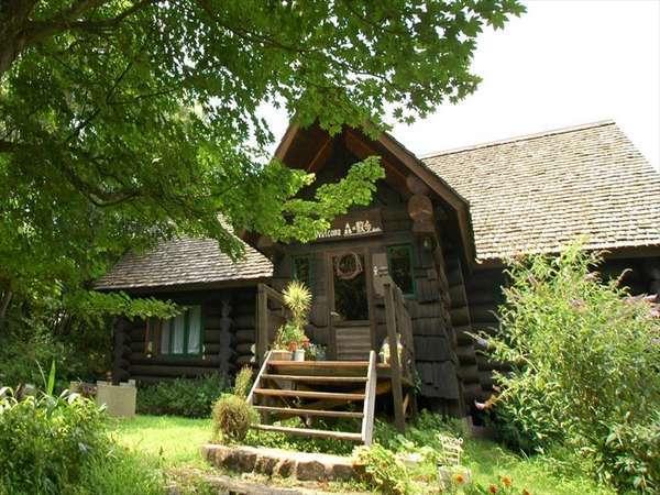 森遊び体験ができる宿 ペンション&コテージ 森の散歩