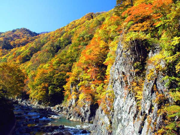 Shinano Sou