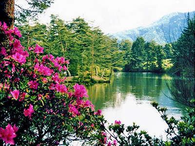 おおぐて湖畔 しらさぎ荘 3枚目の画像