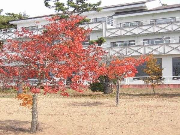 会津志田浜温泉 猪苗代湖畔の宿 レイクサイド磐光の外観
