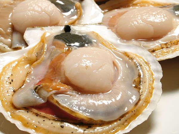 【天然ホタテ】大きいものは子供の拳ほどの大きさに。日本一美味しいホタテとも言われています