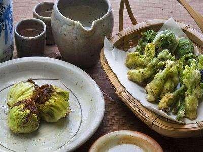 山菜料理(イメージ)