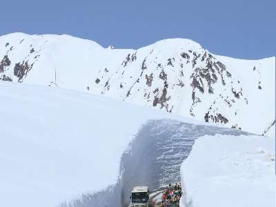 雪で覆われる山々の景色が圧巻です!春の立山黒部アルペンルート